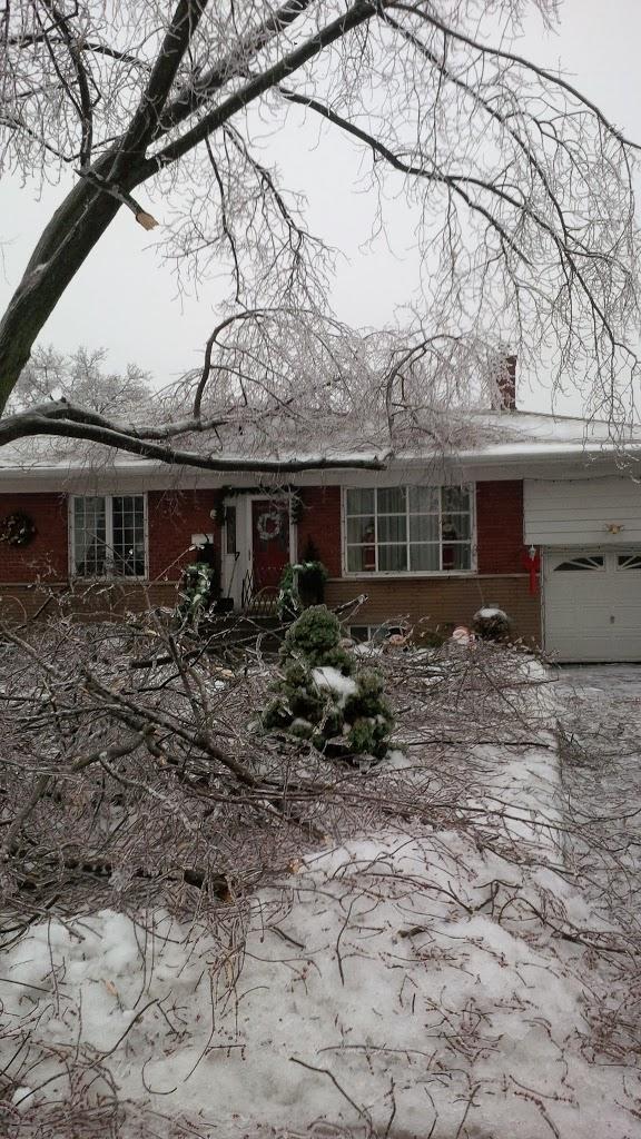 ice storm toronto 2013 tree falls on house